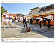 PTE Táncegyüttes - Búza téri termelői piac