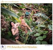 PTE Táncegyüttes - PTE Botanikus Kert-Pálmaház