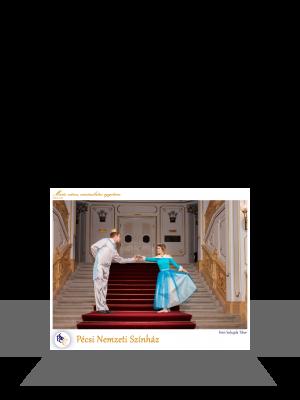 PTE Táncegyüttes -  Pécsi Nemzeti Színház